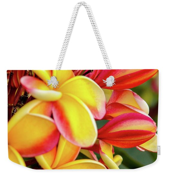 Hawaii Plumeria Flowers In Bloom Weekender Tote Bag