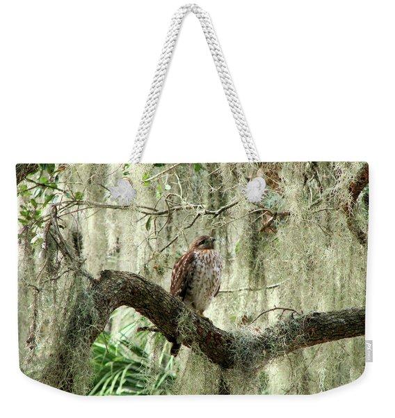 Hawk In Live Oak Hammock Weekender Tote Bag