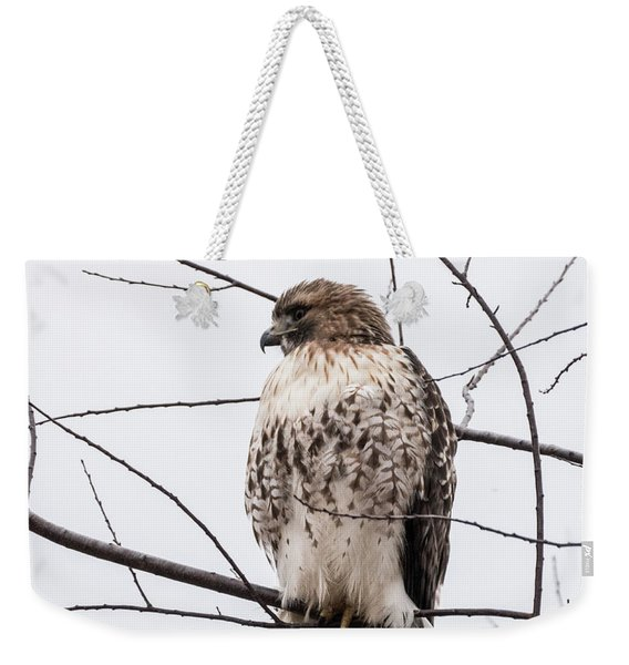Hawk On Alert Weekender Tote Bag