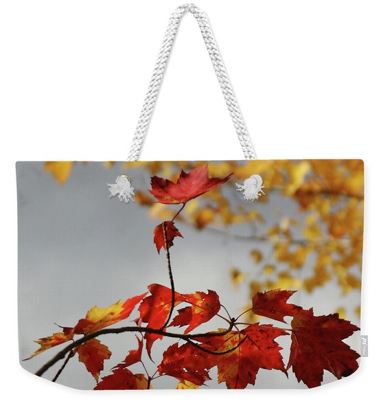 Weekender Tote Bag featuring the photograph The Rising by Wayne King