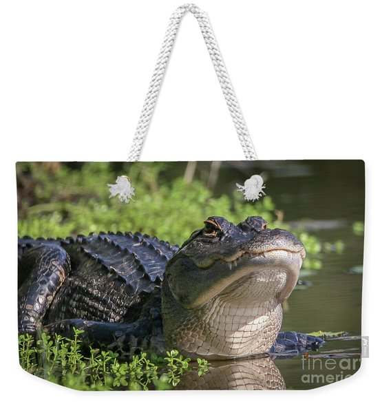 Weekender Tote Bag featuring the photograph Heads-up Gator by Tom Claud