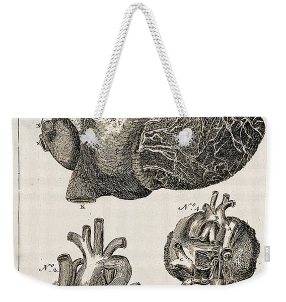 Heart, Anatomical Illustration, 1763 Weekender Tote Bag