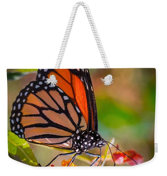 Hello Butterfly Weekender Tote Bag