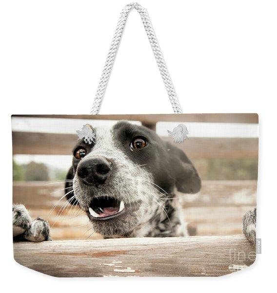 Help Let Me Out Weekender Tote Bag