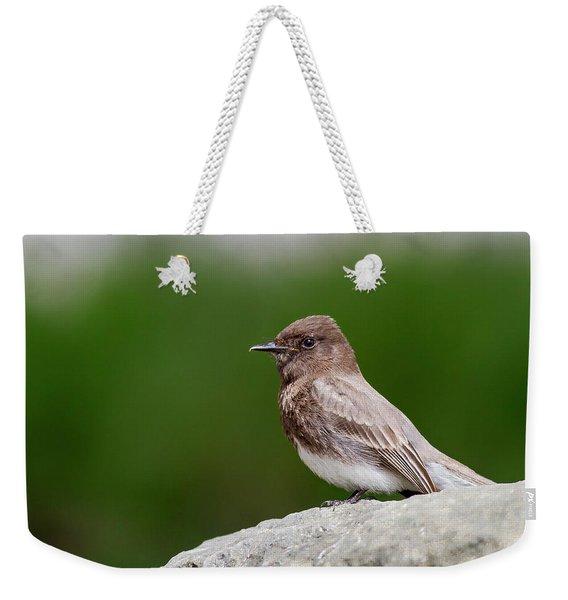 Black Phoebe Weekender Tote Bag