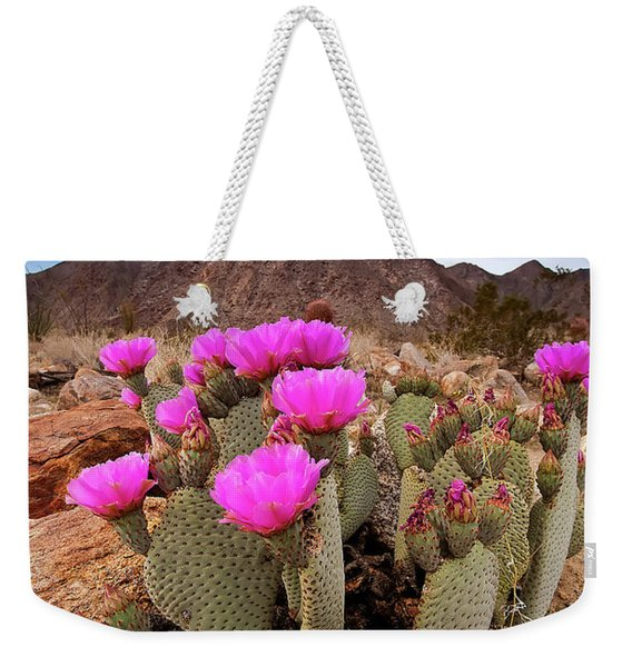 Henderson Canyon Beavertail Weekender Tote Bag