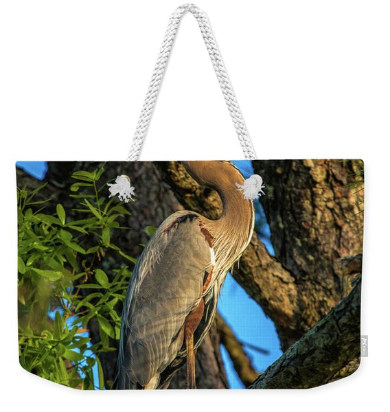 Heron In The Pine Tree Weekender Tote Bag