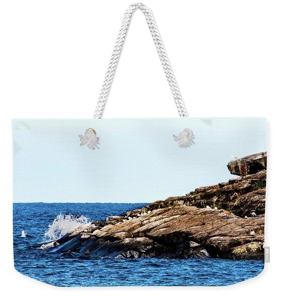 Herring Gull Picnic Weekender Tote Bag