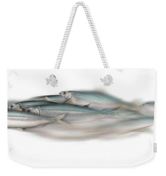 Herring School Of Fish - Clupea - Nautical Art - Seafood Art - Marine Art - Game Fish Weekender Tote Bag