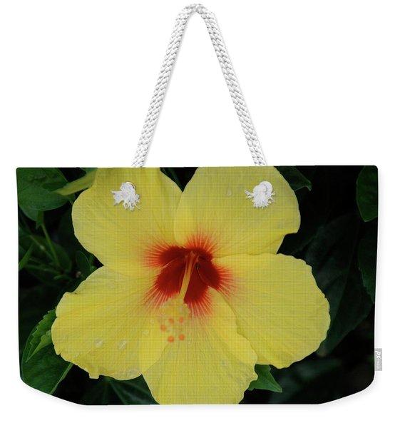 Sun Lover Hibiscus Weekender Tote Bag