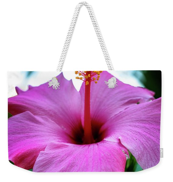 Weekender Tote Bag featuring the photograph Hibiscus by Tom Singleton