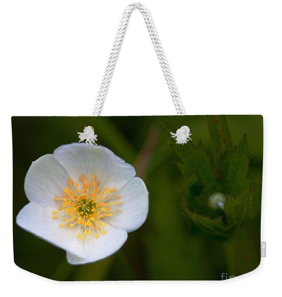 Hidden Tears Weekender Tote Bag