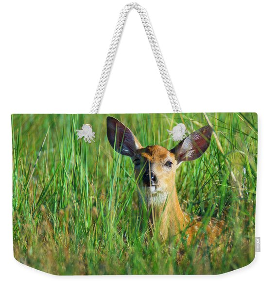 Weekender Tote Bag featuring the photograph Hiding by John De Bord