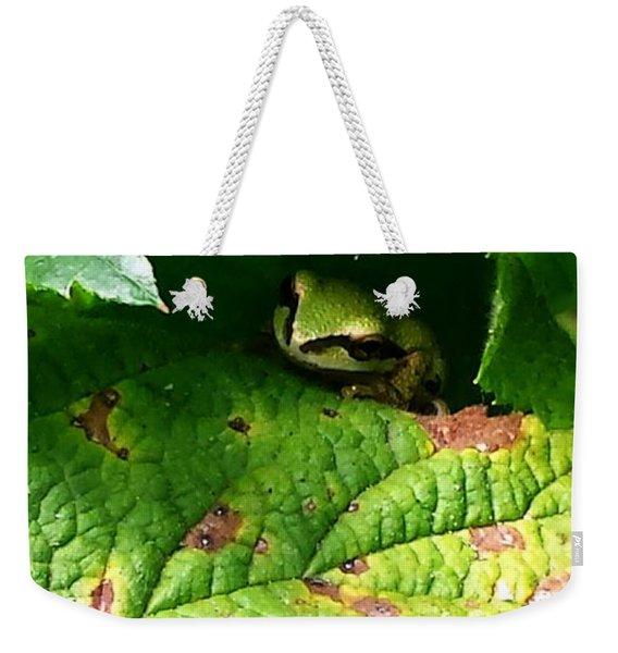 Hiding Tree Frog Weekender Tote Bag