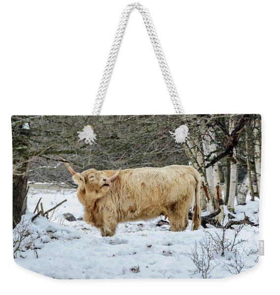 Highlander In Winter Weekender Tote Bag