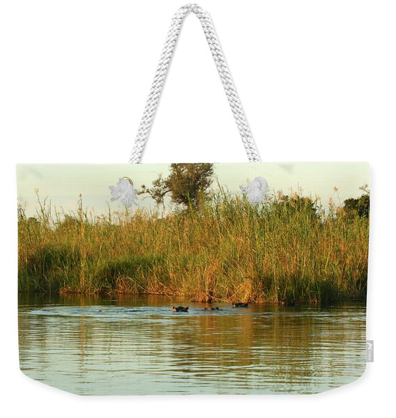 Hippos, South Africa Weekender Tote Bag