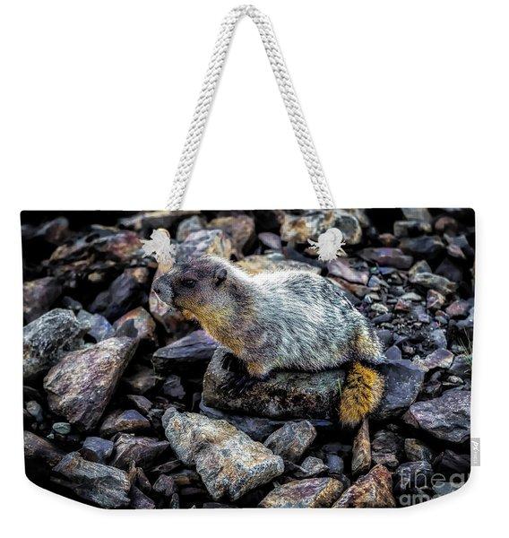 Hoary Marmot Weekender Tote Bag