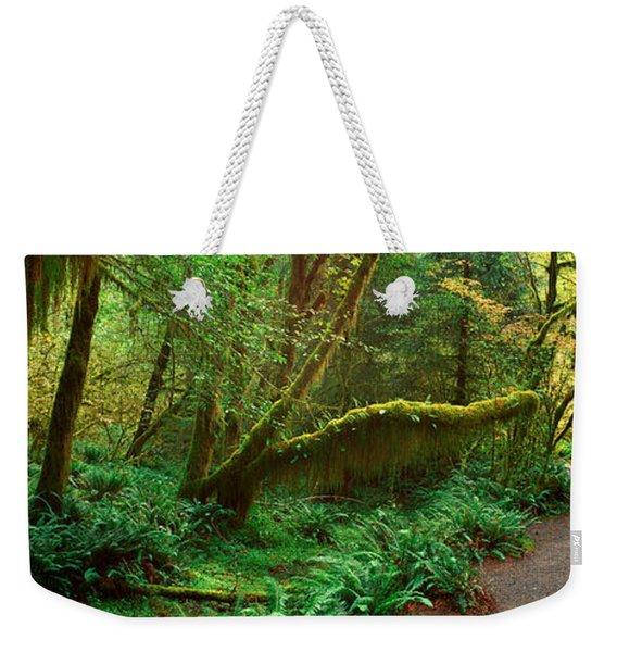 Hoh Rainforest, Olympic National Park Weekender Tote Bag