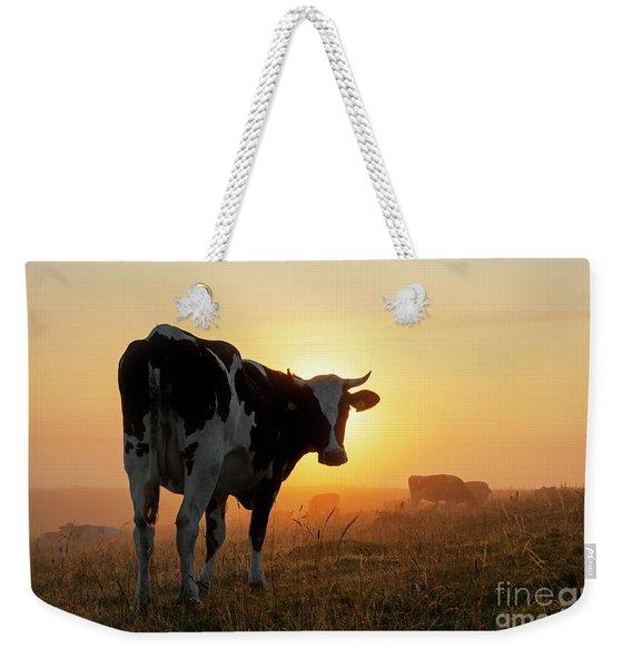 Holstein Friesian Cow Weekender Tote Bag