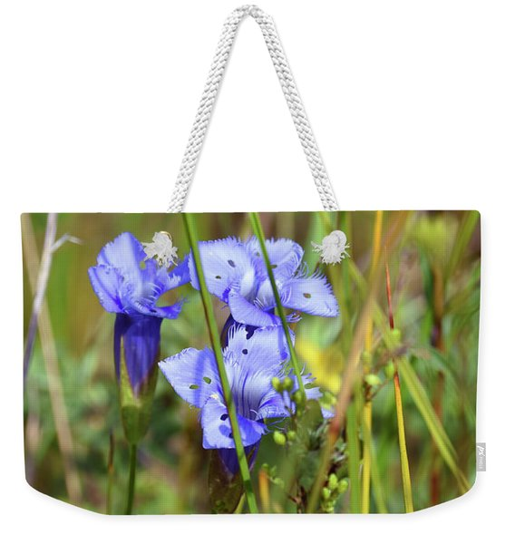Weekender Tote Bag featuring the photograph Holy Blue Gentian by Sally Sperry