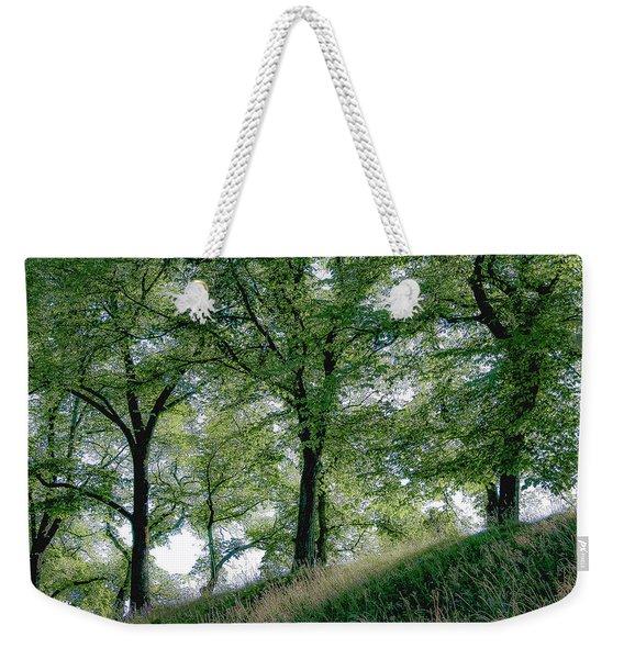 Homage To Carl Larsson Weekender Tote Bag