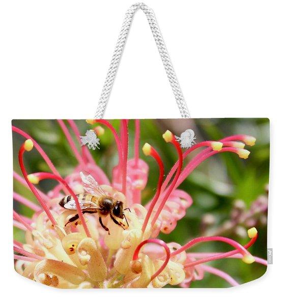 Honey Bee On Grevillea  Weekender Tote Bag