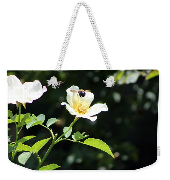 Honey Bees In Flight Over White Rose Weekender Tote Bag