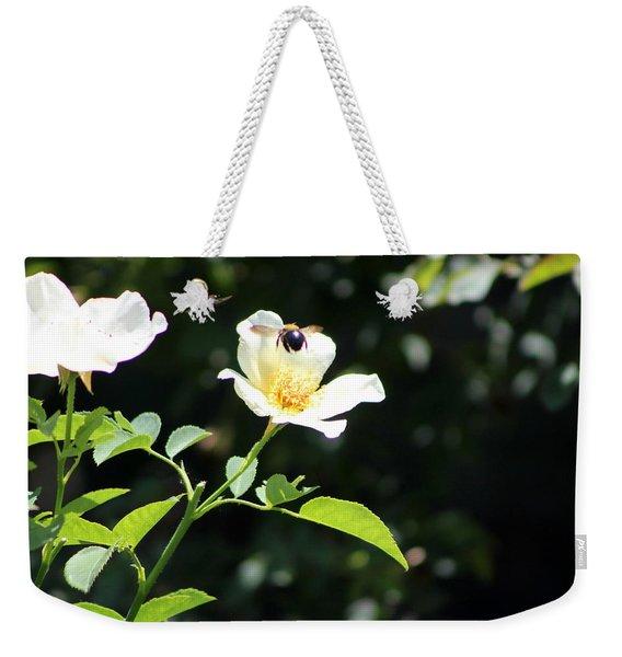 Honey Bees In Flight Over White Rose Weekender Tote Bag