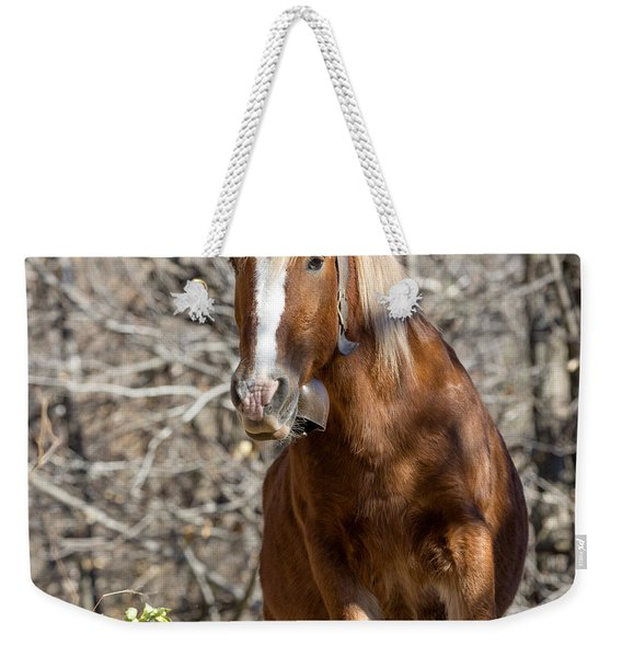 Paquita The Horse Weekender Tote Bag