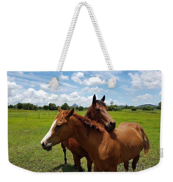 Horse Cuddles Weekender Tote Bag