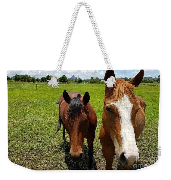 Horse Friendship Weekender Tote Bag
