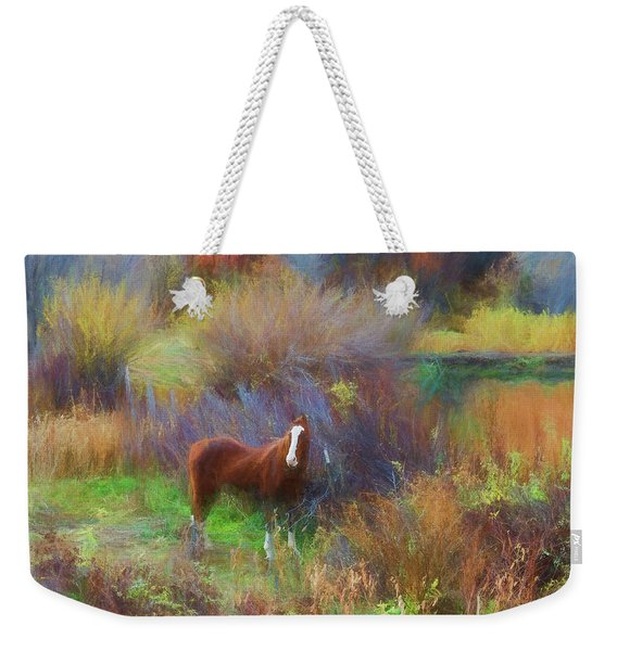 Horse Of Many Colors Weekender Tote Bag