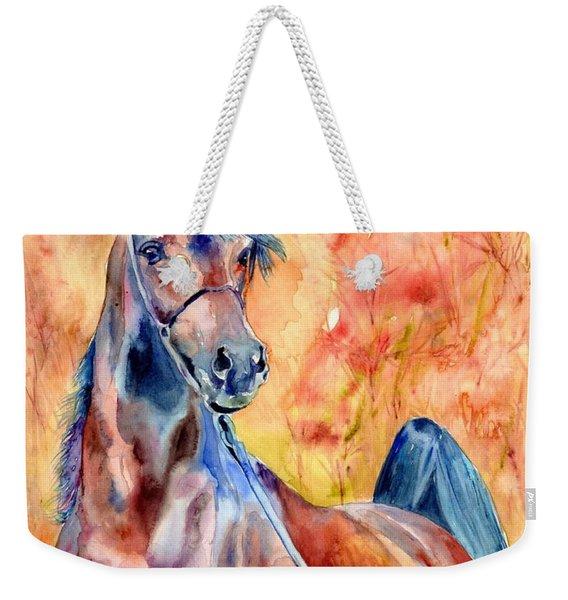 Horse On The Orange Background Weekender Tote Bag