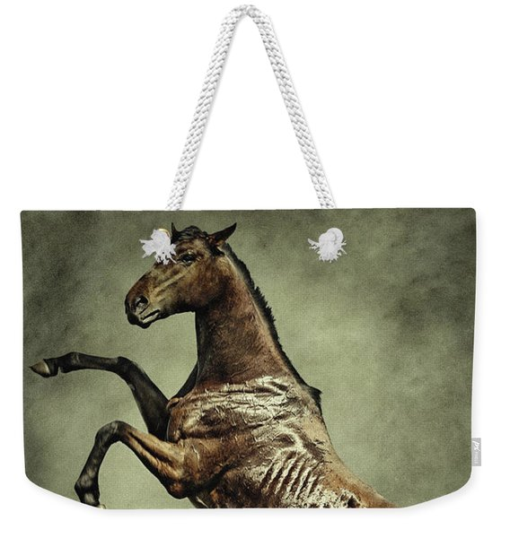 Horse Rearing Up On Dust Background Weekender Tote Bag