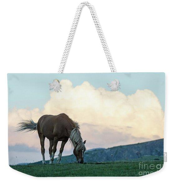 Horse - Rila Big Sky Weekender Tote Bag