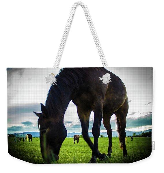 Horse Time Weekender Tote Bag