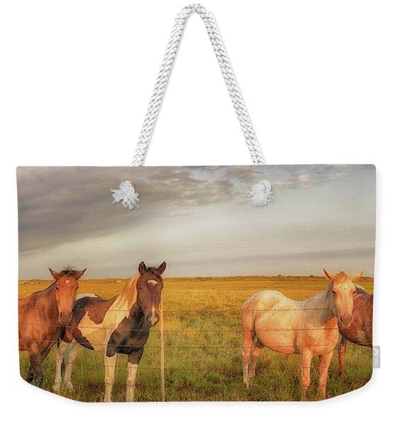 Horses At Kalae Weekender Tote Bag