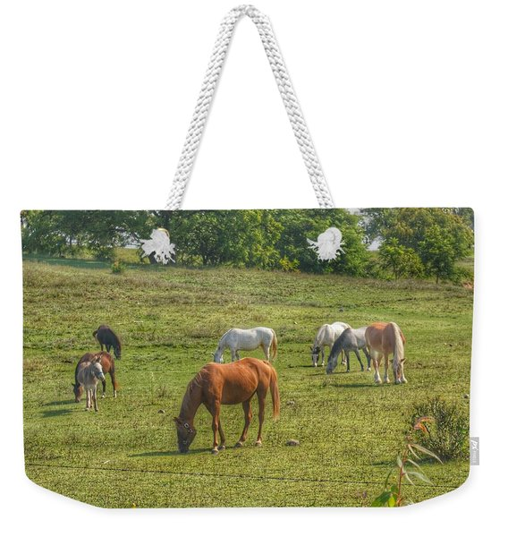 1003 - Horses In A Pasture I Weekender Tote Bag