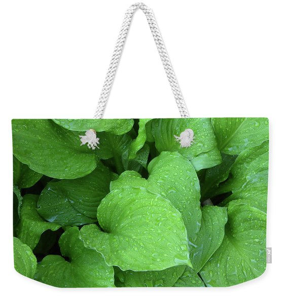 Hostas After The Rain IIi Weekender Tote Bag