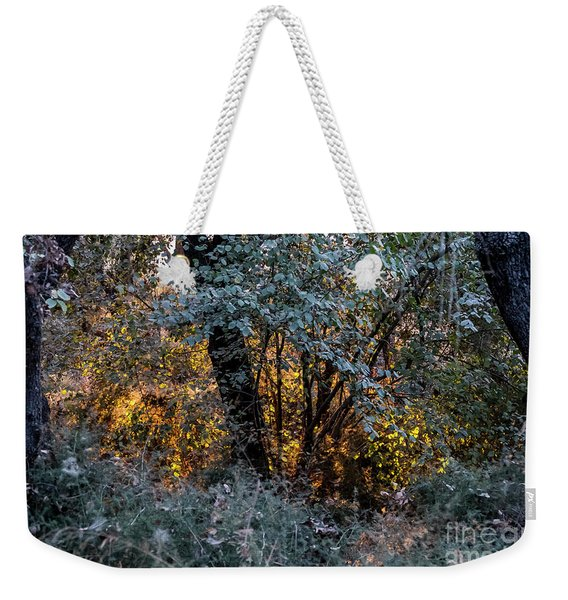 Weekender Tote Bag featuring the photograph Hot Sunset In The Forest by Arik Baltinester