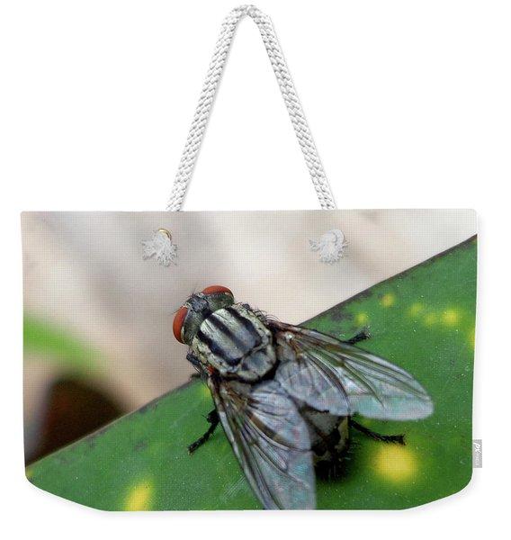 House Fly On Leaf Weekender Tote Bag