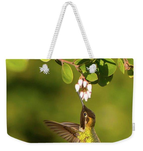 Hummingbird And Manzanita Blossom Weekender Tote Bag