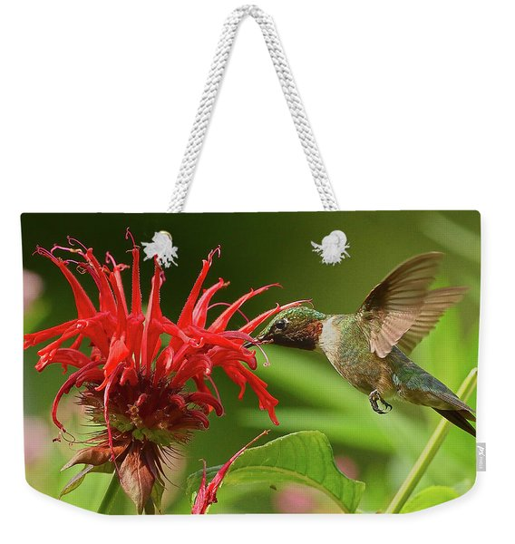 Hummingbird Delight Weekender Tote Bag