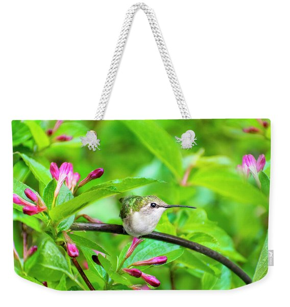 Hummingbird Honeysuckle Weekender Tote Bag