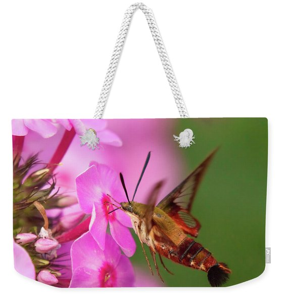 Hummingbird Moth Feeding 1 Weekender Tote Bag