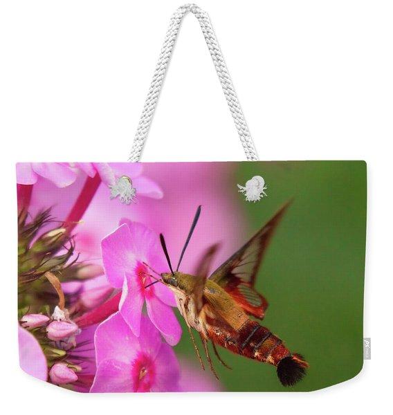 Hummingbird Moth Feeding 1 Weekender Tote Bag