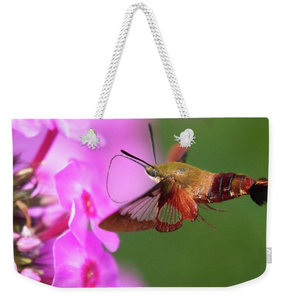 Hummingbird Moth Feeding 2 Weekender Tote Bag