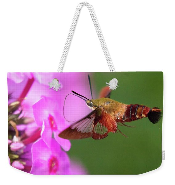 Hummingbird Moth Feeding 2 Weekender Tote Bag