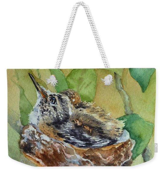 Hummingbird Nestiing Weekender Tote Bag