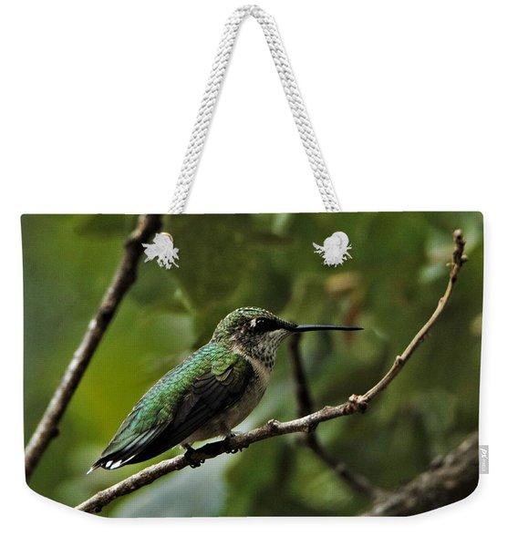 Hummingbird On Branch Weekender Tote Bag